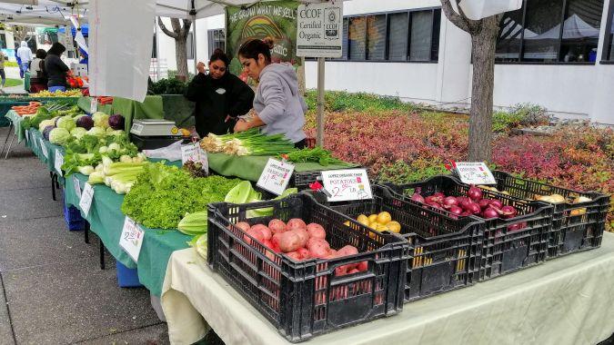 Organic veg at Fremont farmers market
